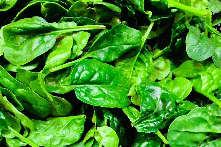 Puebla Salad