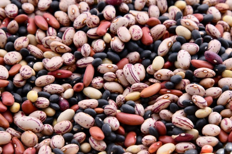 Best Bean Mix